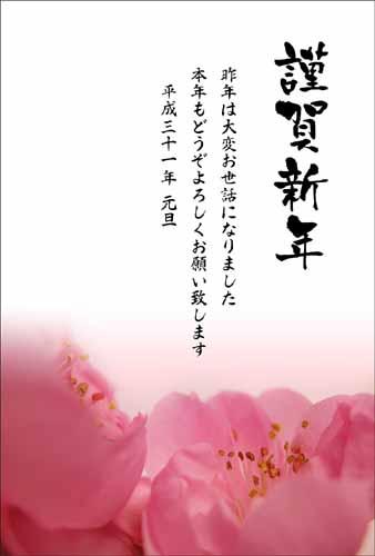年賀状テンプレート 新春花色年賀状shot3